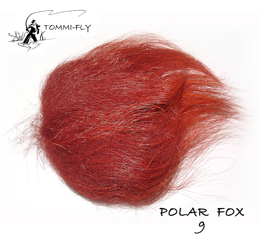 Polar fox - Fire brown